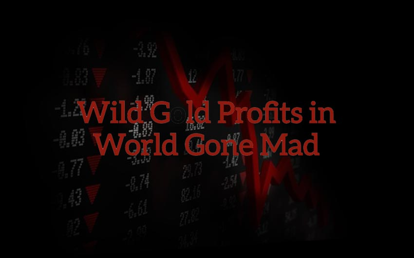 wild-gold-profits-in-a-world-gone-mad-sean-brodrick